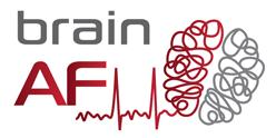 studies-brain-af-brain-af